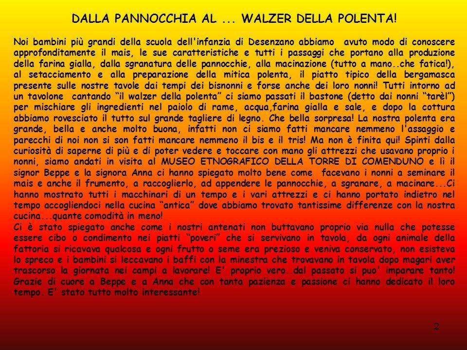 DALLA PANNOCCHIA AL ... WALZER DELLA POLENTA!