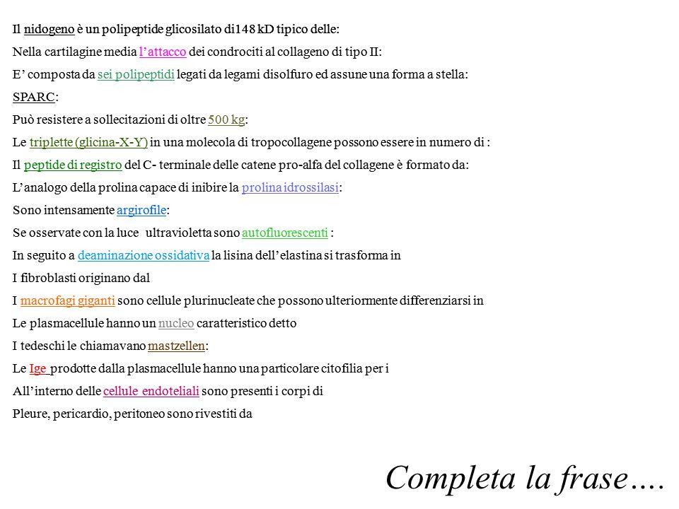 Il nidogeno è un polipeptide glicosilato di148 kD tipico delle: