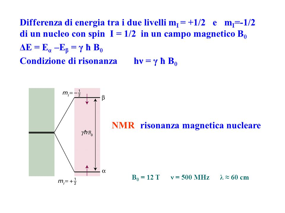 Condizione di risonanza hν = γ ħ B0