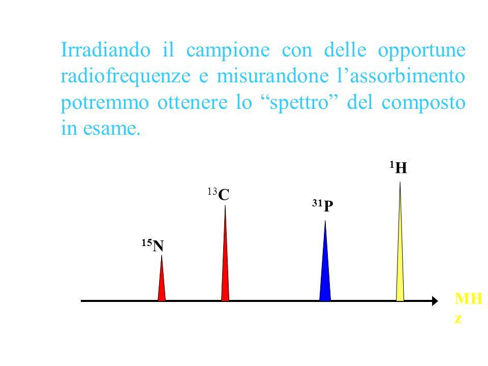 Irradiando il campione con delle opportune radiofrequenze e misurandone l'assorbimento potremmo ottenere lo spettro del composto in esame.