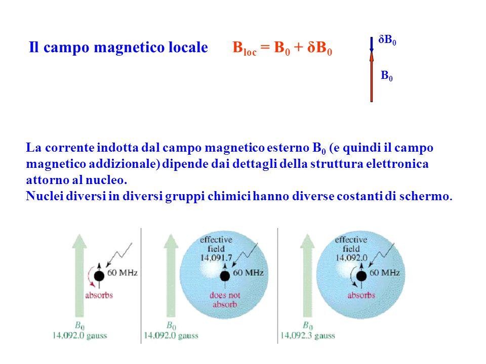 Il campo magnetico locale Bloc = B0 + δB0