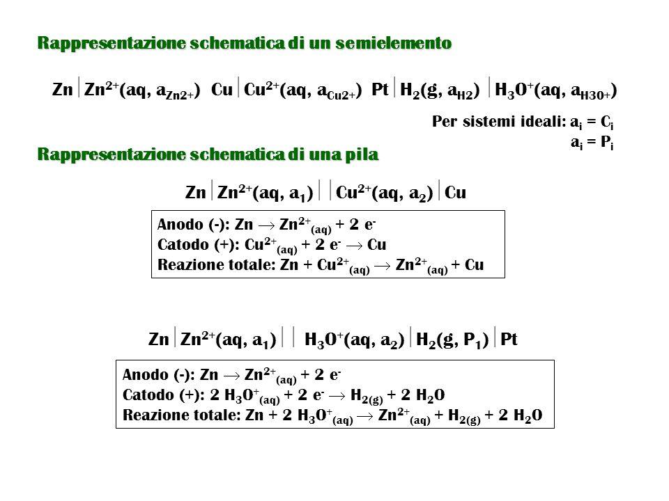 Rappresentazione schematica di un semielemento