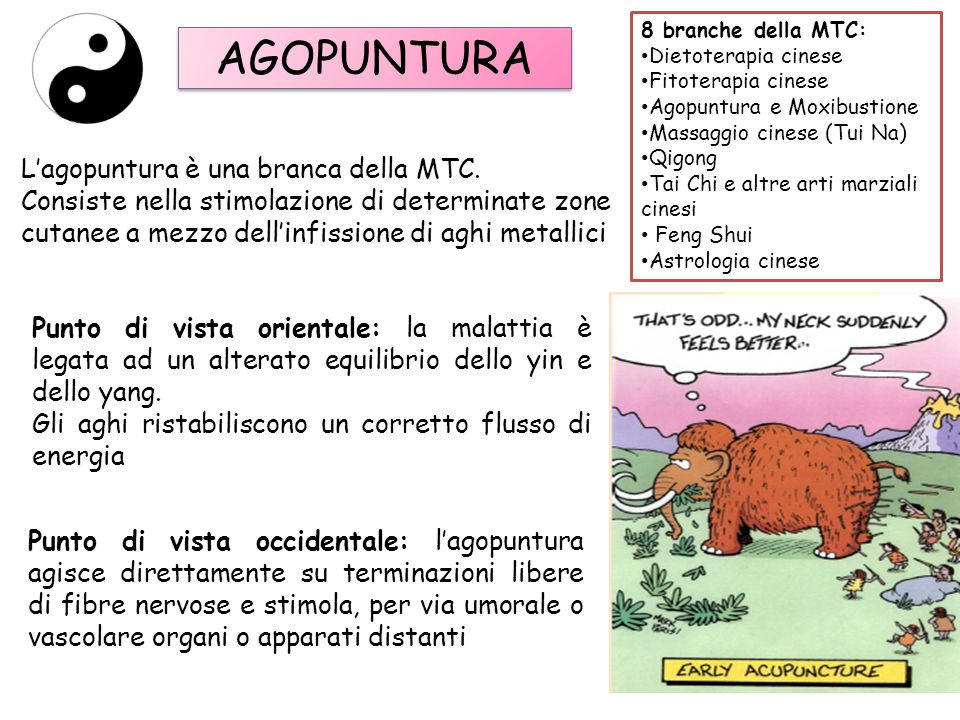 AGOPUNTURA L'agopuntura è una branca della MTC.