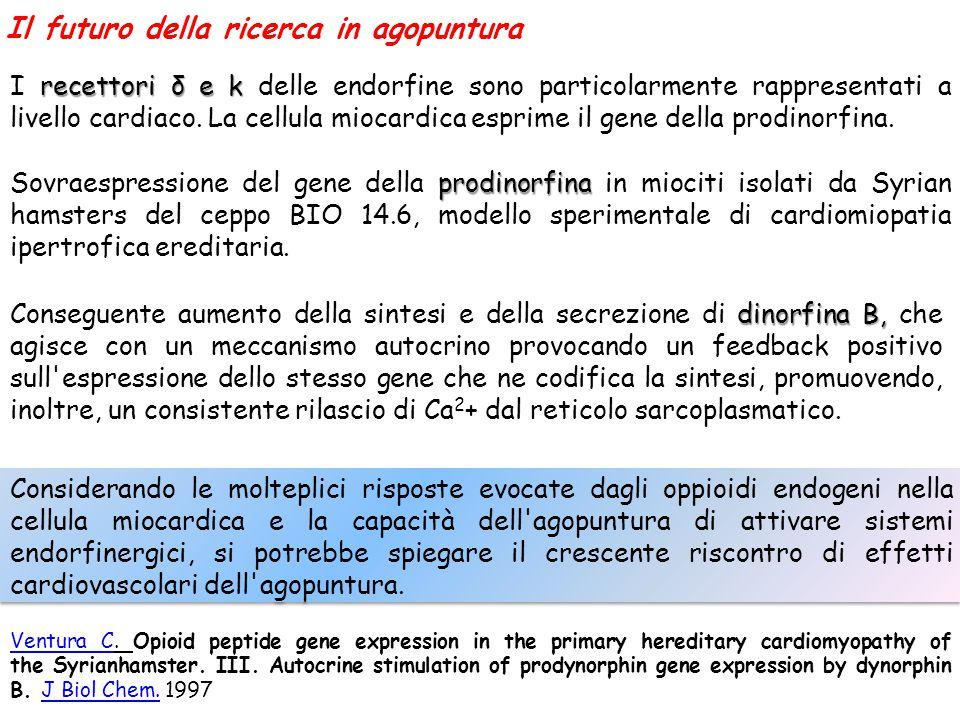 Il futuro della ricerca in agopuntura