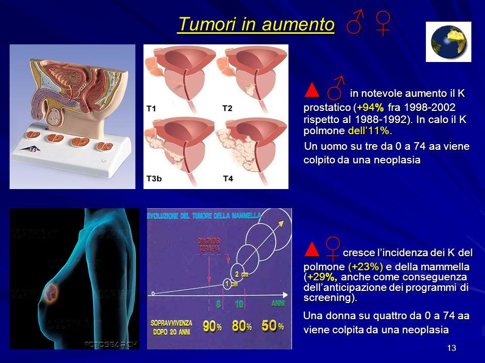 Tumori in aumento ♂ ♀ ▲ ♂ in notevole aumento il K prostatico (+94% fra 1998-2002 rispetto al 1988-1992). In calo il K polmone dell'11%.