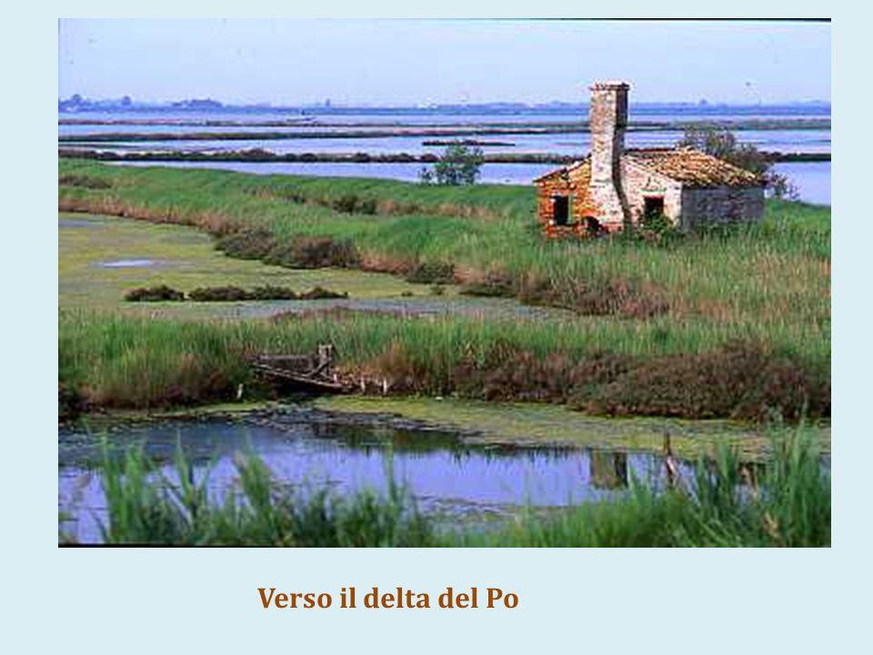 Maria Zef: donne campi Verso il delta del Po