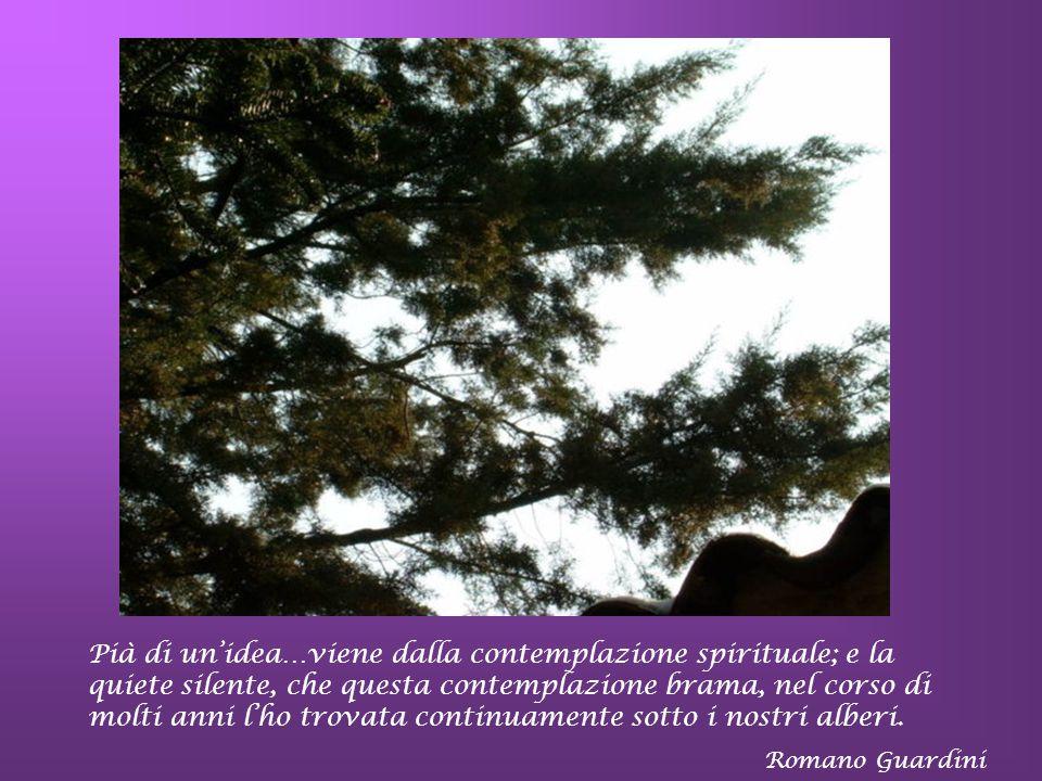 Pià di un'idea…viene dalla contemplazione spirituale; e la quiete silente, che questa contemplazione brama, nel corso di molti anni l'ho trovata continuamente sotto i nostri alberi.