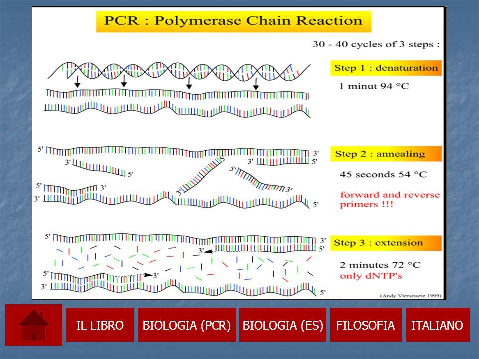 IL LIBRO BIOLOGIA (PCR) BIOLOGIA (ES) FILOSOFIA ITALIANO