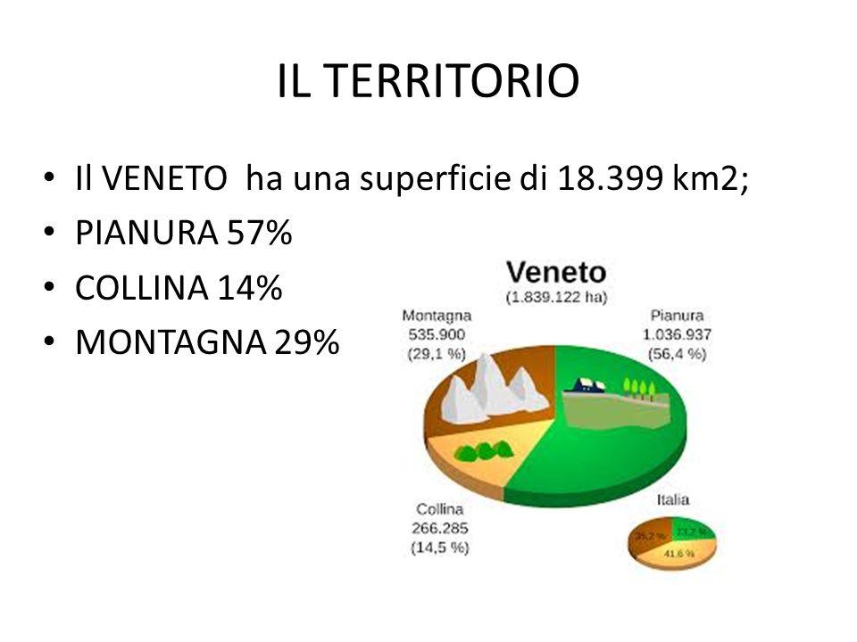 IL TERRITORIO Il VENETO ha una superficie di 18.399 km2; PIANURA 57%