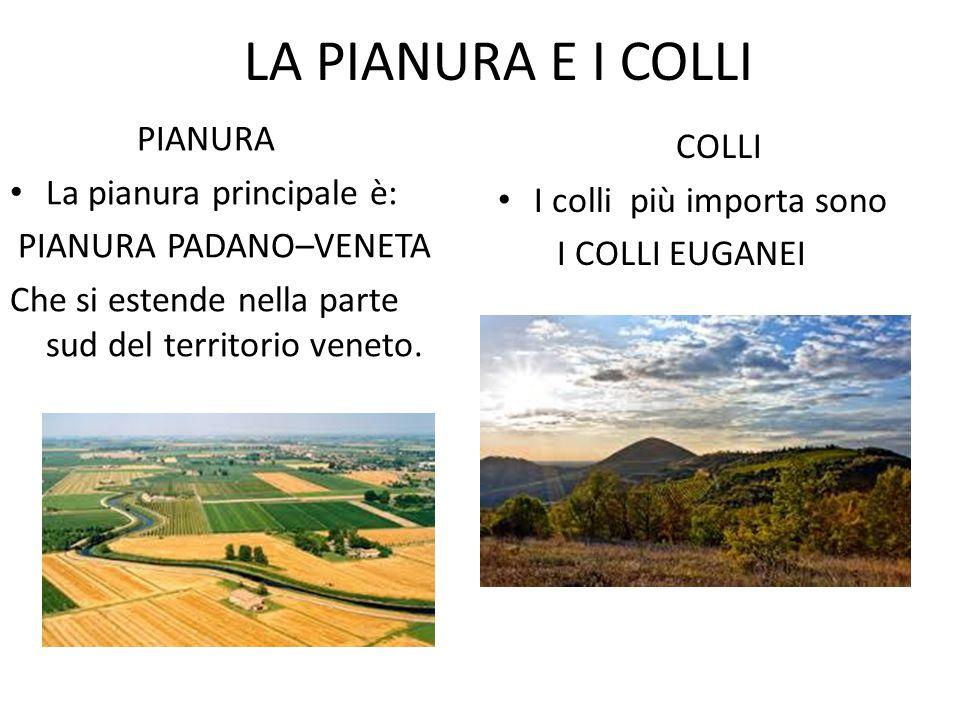 LA PIANURA E I COLLI PIANURA COLLI La pianura principale è: