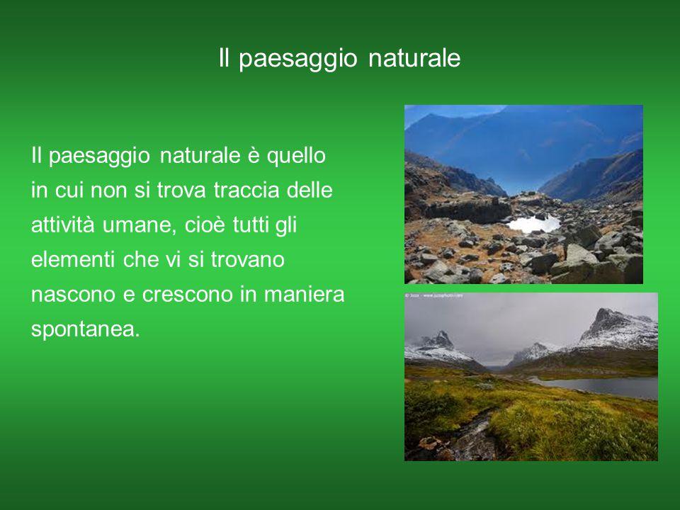 Il paesaggio naturale Il paesaggio naturale è quello