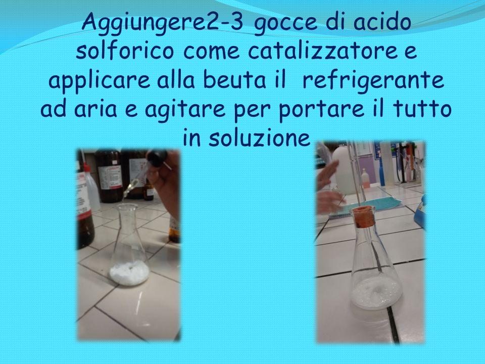 Aggiungere2-3 gocce di acido solforico come catalizzatore e applicare alla beuta il refrigerante ad aria e agitare per portare il tutto in soluzione