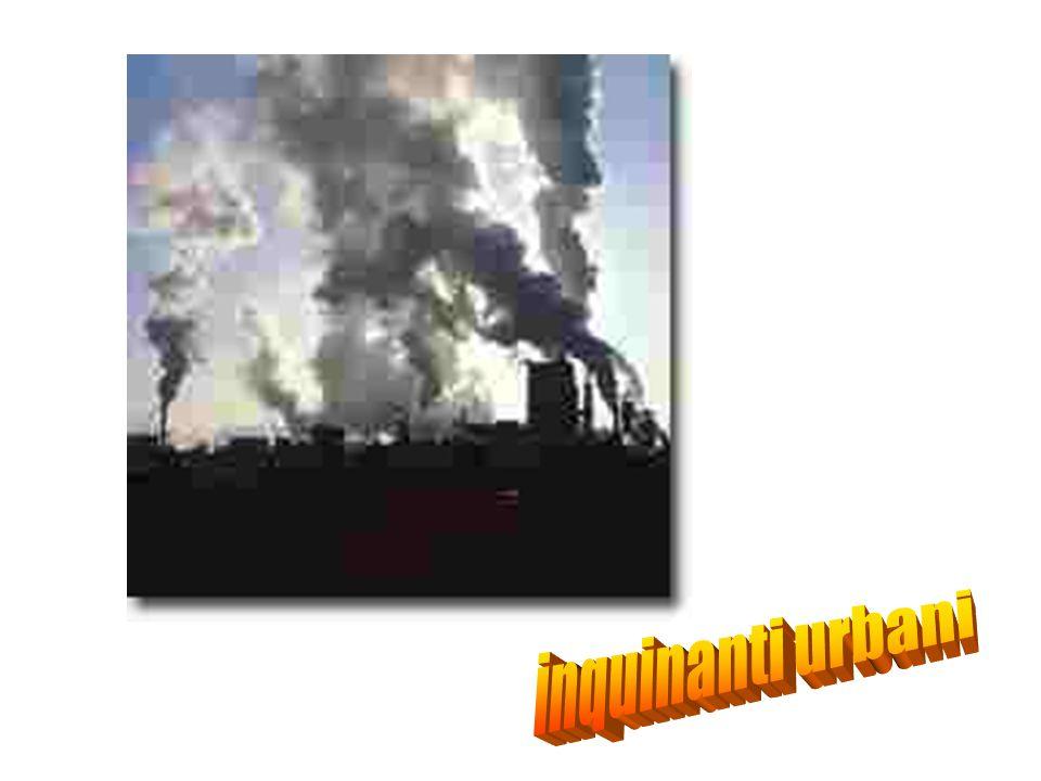 inquinanti urbani