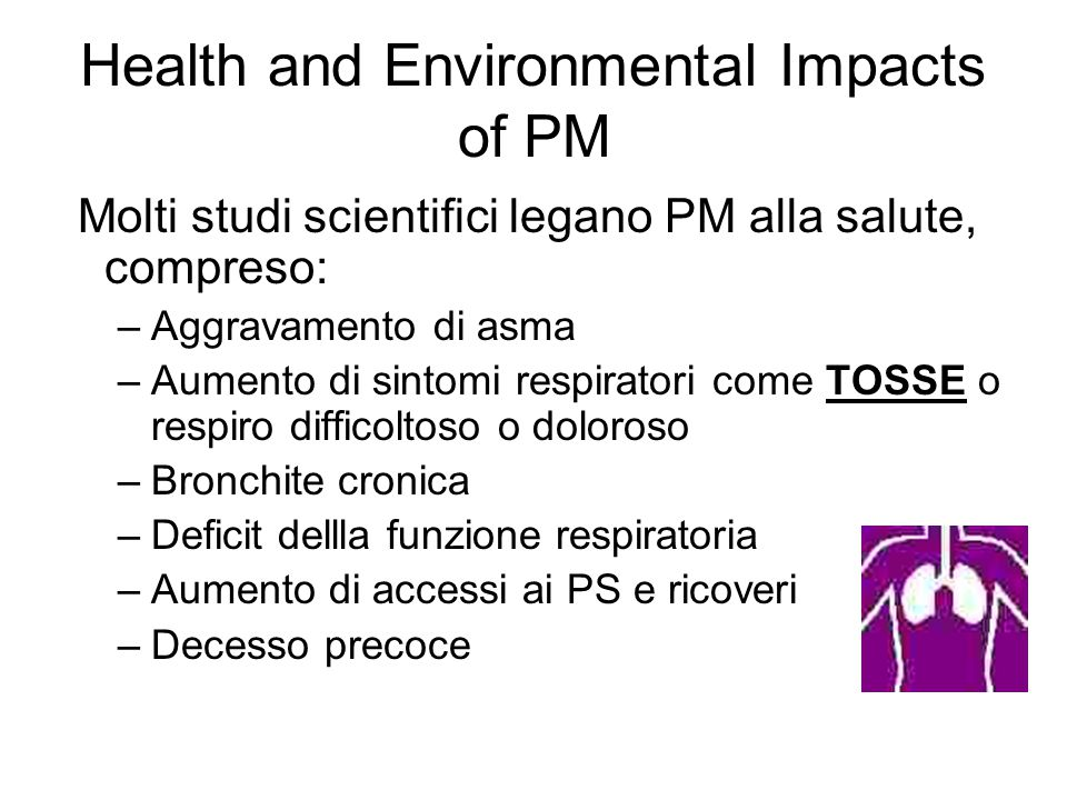 Health and Environmental Impacts of PM