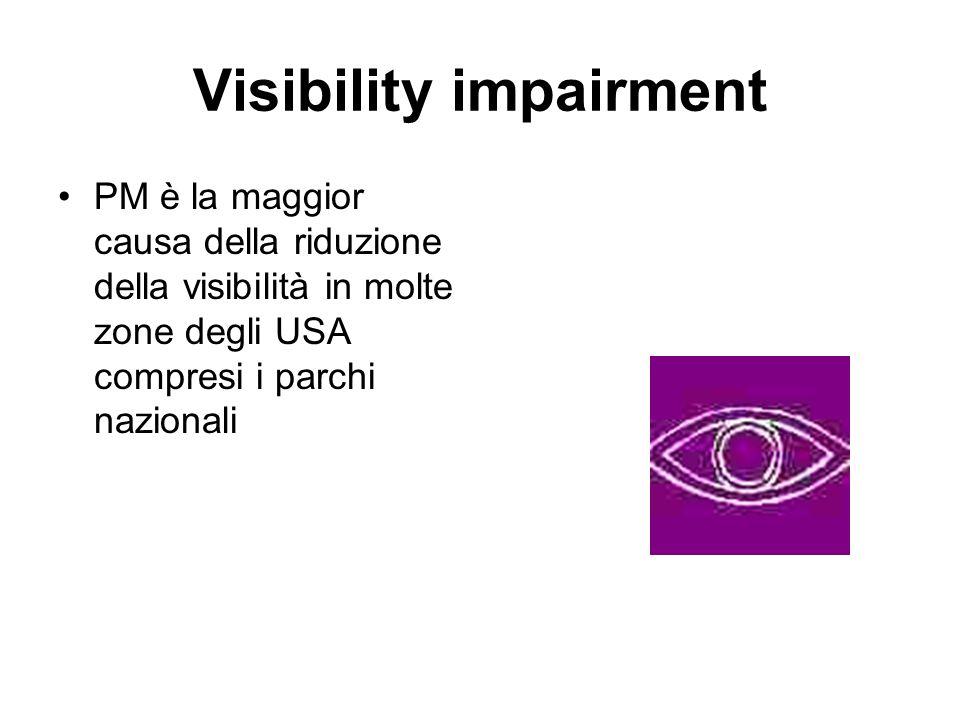 Visibility impairment
