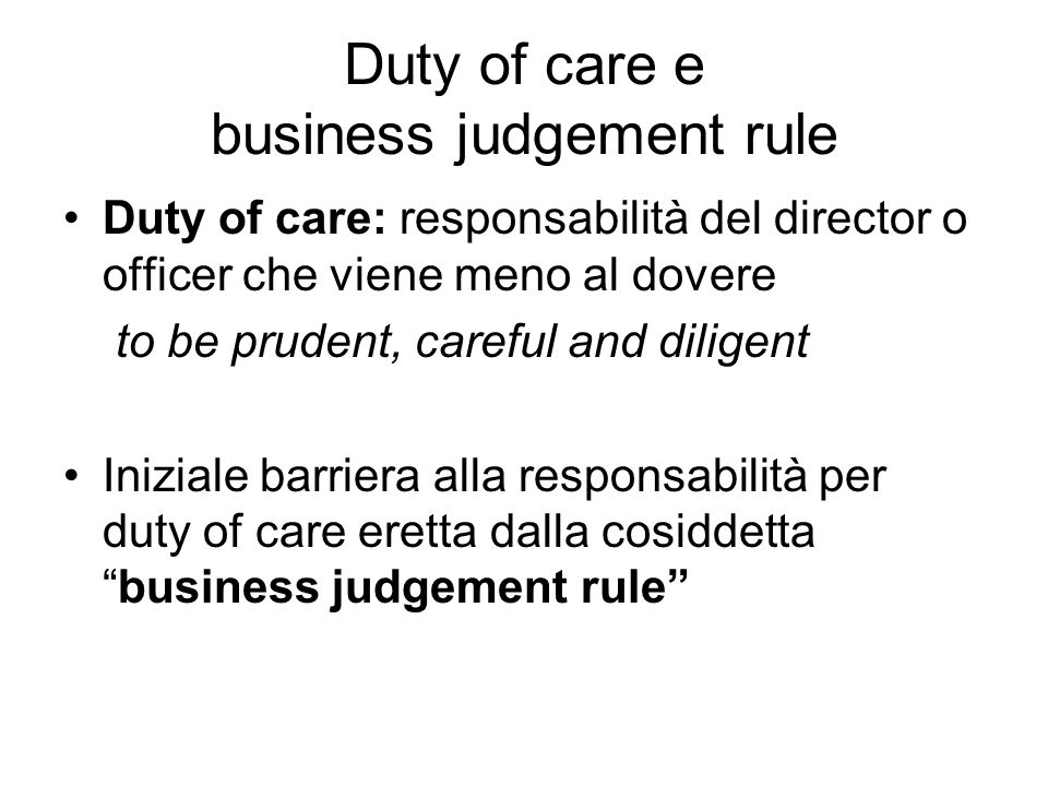 Duty of care e business judgement rule