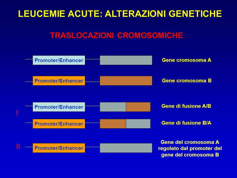 LEUCEMIE ACUTE: ALTERAZIONI GENETICHE regolato dal promoter del