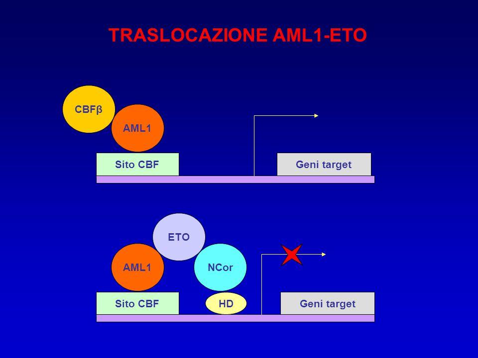 TRASLOCAZIONE AML1-ETO