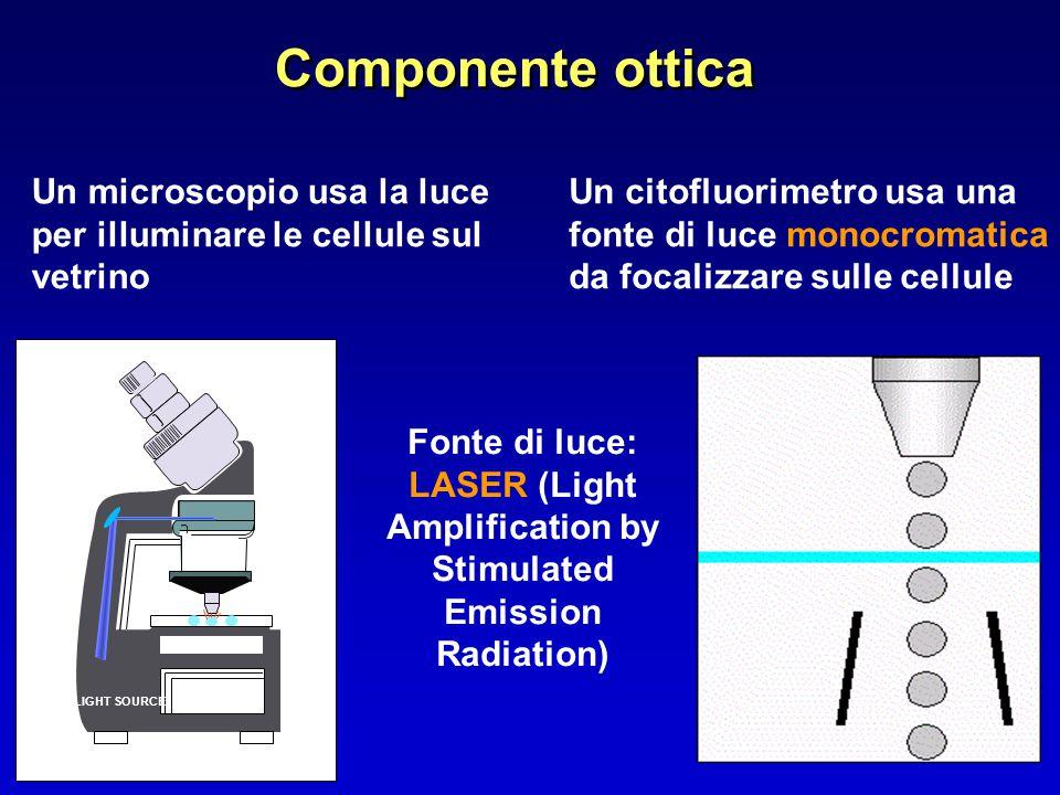 Componente ottica Un microscopio usa la luce