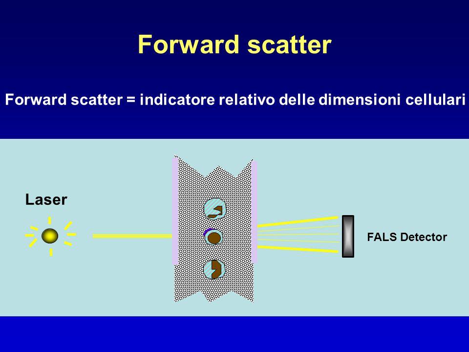 Forward scatter Forward scatter = indicatore relativo delle dimensioni cellulari.