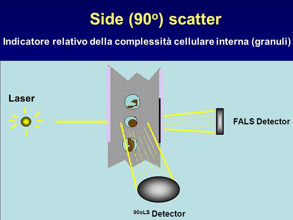 Side (90o) scatter Indicatore relativo della complessità cellulare interna (granuli) FALS Detector.