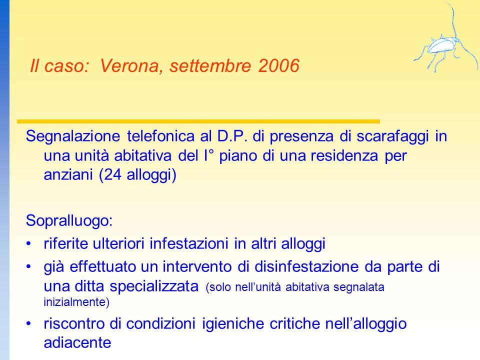 Il caso: Verona, settembre 2006