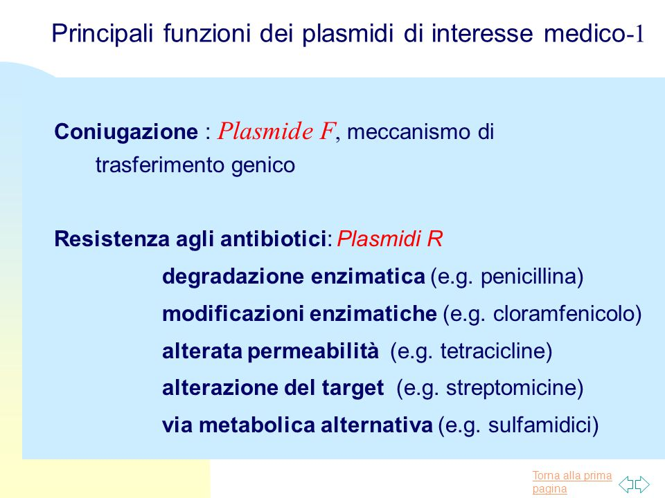 Principali funzioni dei plasmidi di interesse medico-1
