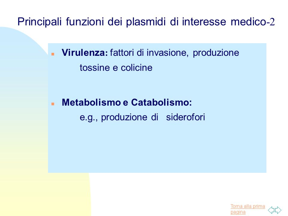 Principali funzioni dei plasmidi di interesse medico-2