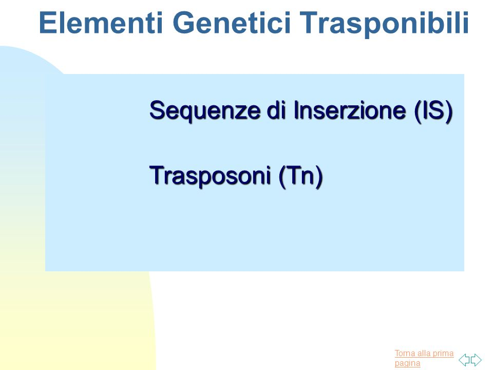 Elementi Genetici Trasponibili