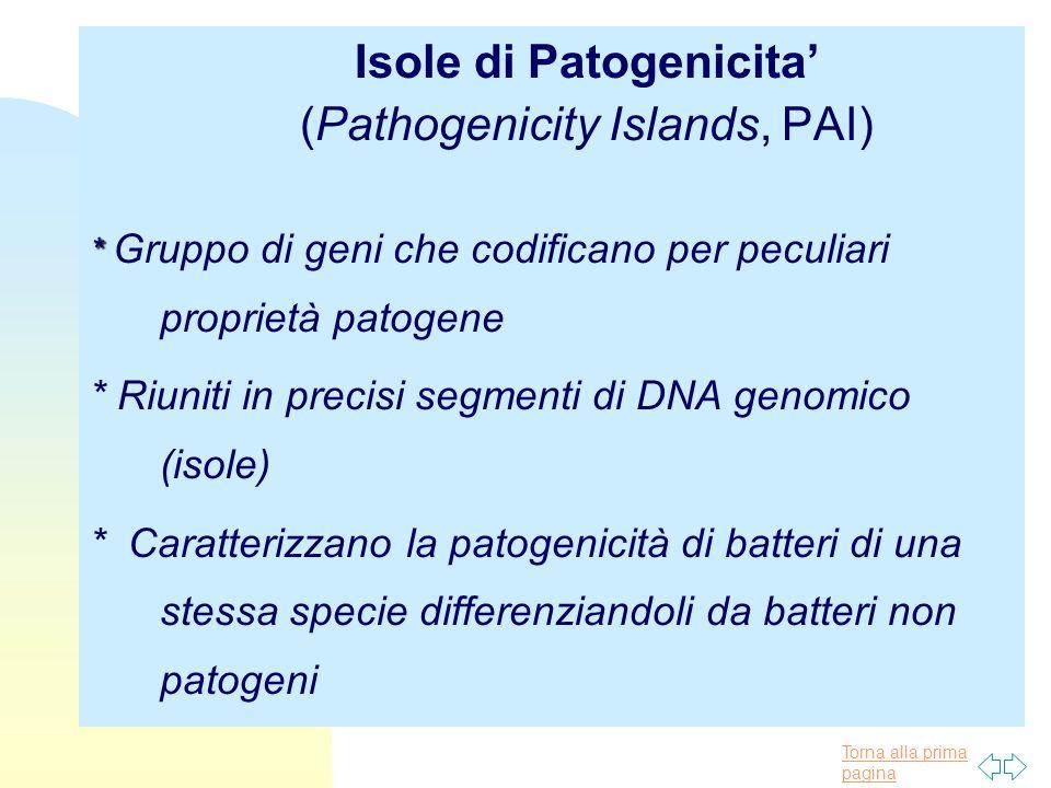 Isole di Patogenicita' (Pathogenicity Islands, PAI)