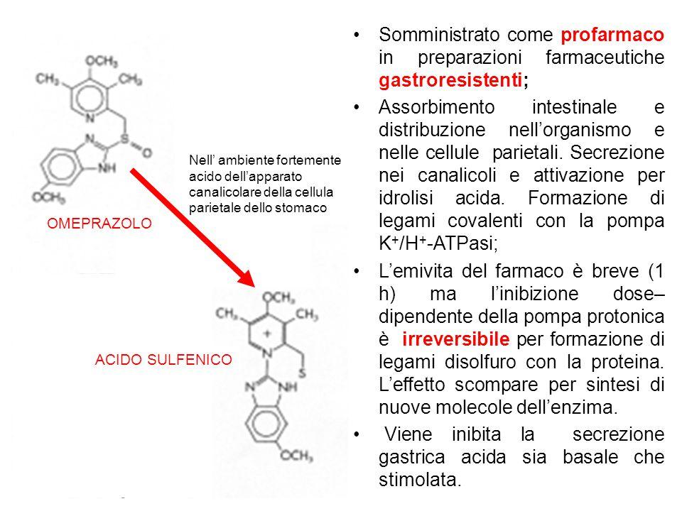 Viene inibita la secrezione gastrica acida sia basale che stimolata.