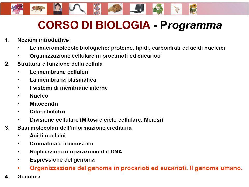 CORSO DI BIOLOGIA - Programma