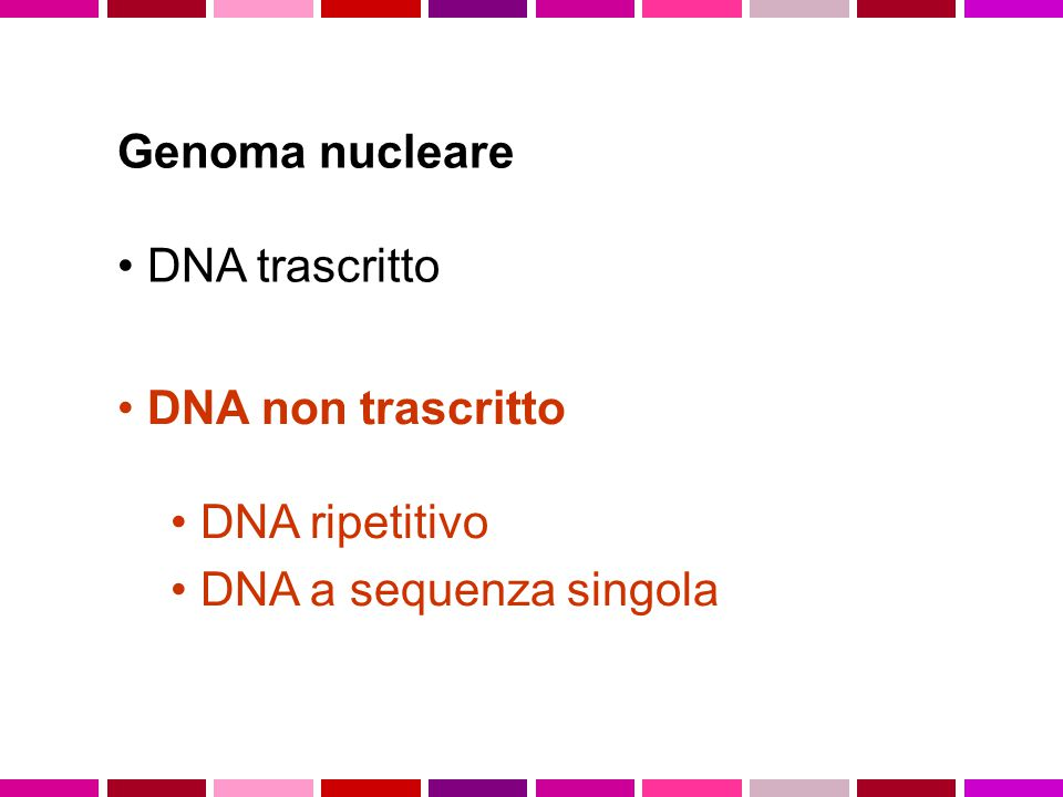 Genoma nucleare DNA trascritto DNA non trascritto DNA ripetitivo DNA a sequenza singola