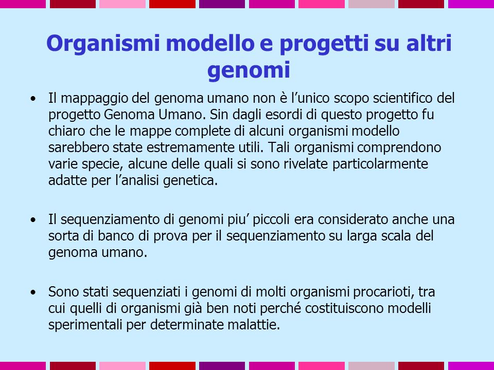 Organismi modello e progetti su altri genomi