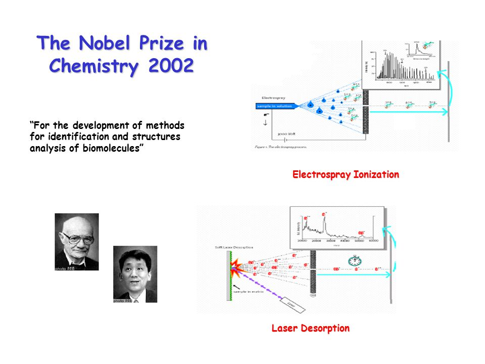 The Nobel Prize in Chemistry 2002