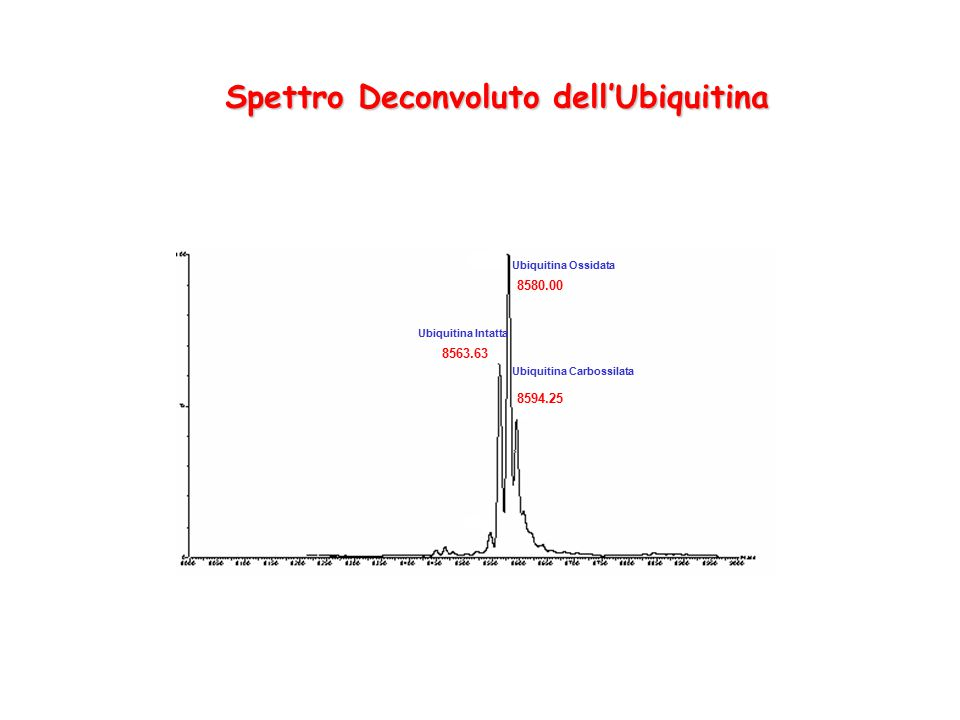 Spettro Deconvoluto dell'Ubiquitina