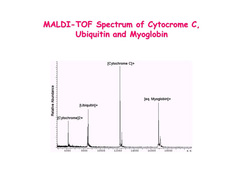 MALDI-TOF Spectrum of Cytocrome C, Ubiquitin and Myoglobin