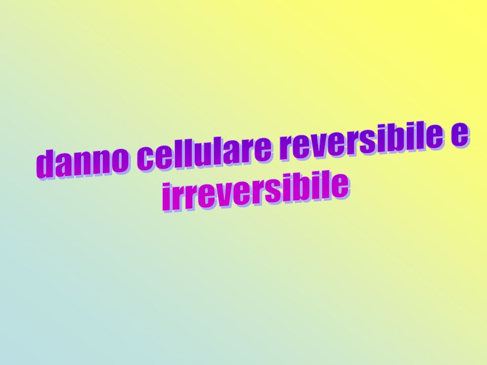 danno cellulare reversibile e