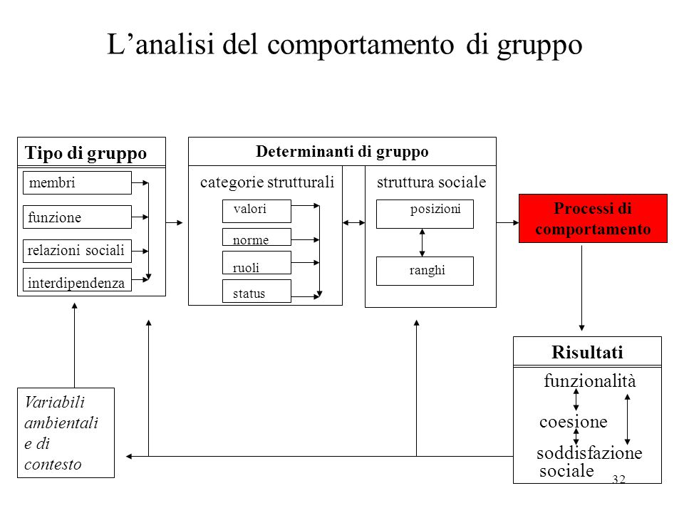 L'analisi del comportamento di gruppo