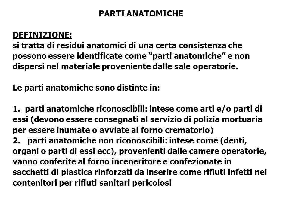 PARTI ANATOMICHE DEFINIZIONE: