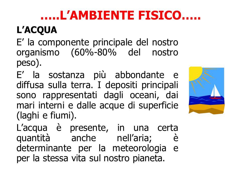 …..L'AMBIENTE FISICO….. L'ACQUA