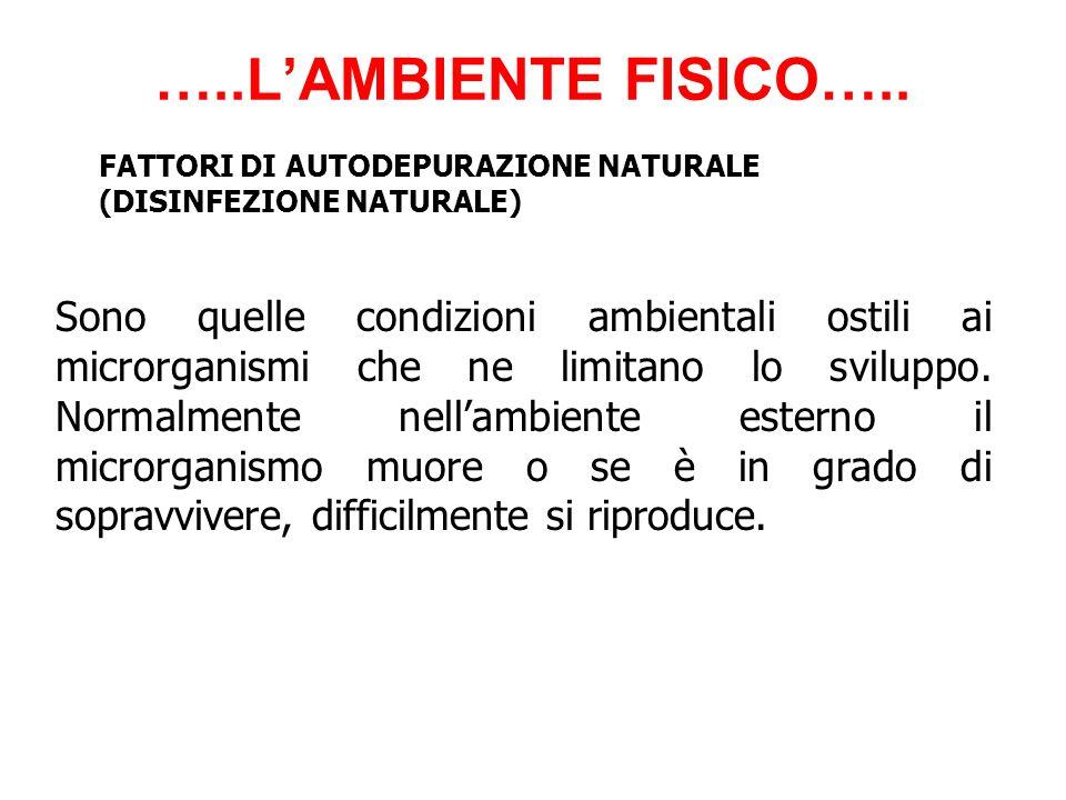 …..L'AMBIENTE FISICO….. FATTORI DI AUTODEPURAZIONE NATURALE. (DISINFEZIONE NATURALE)