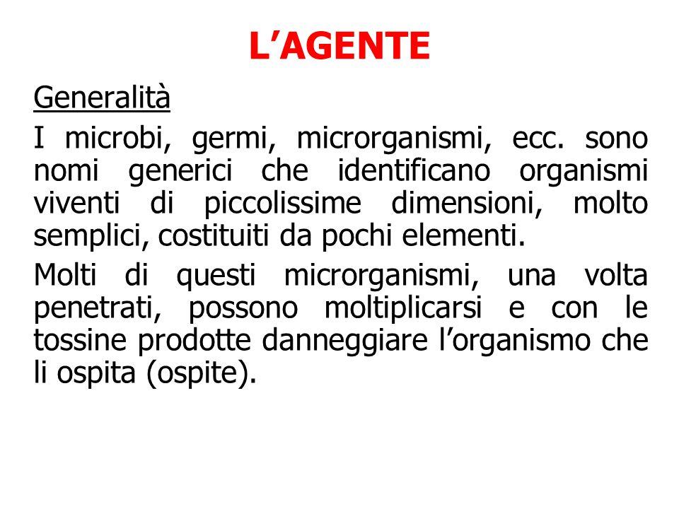 L'AGENTE Generalità.