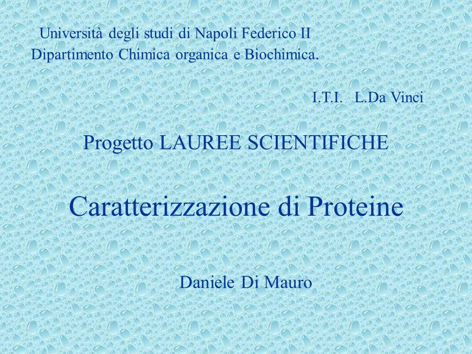 Caratterizzazione di Proteine