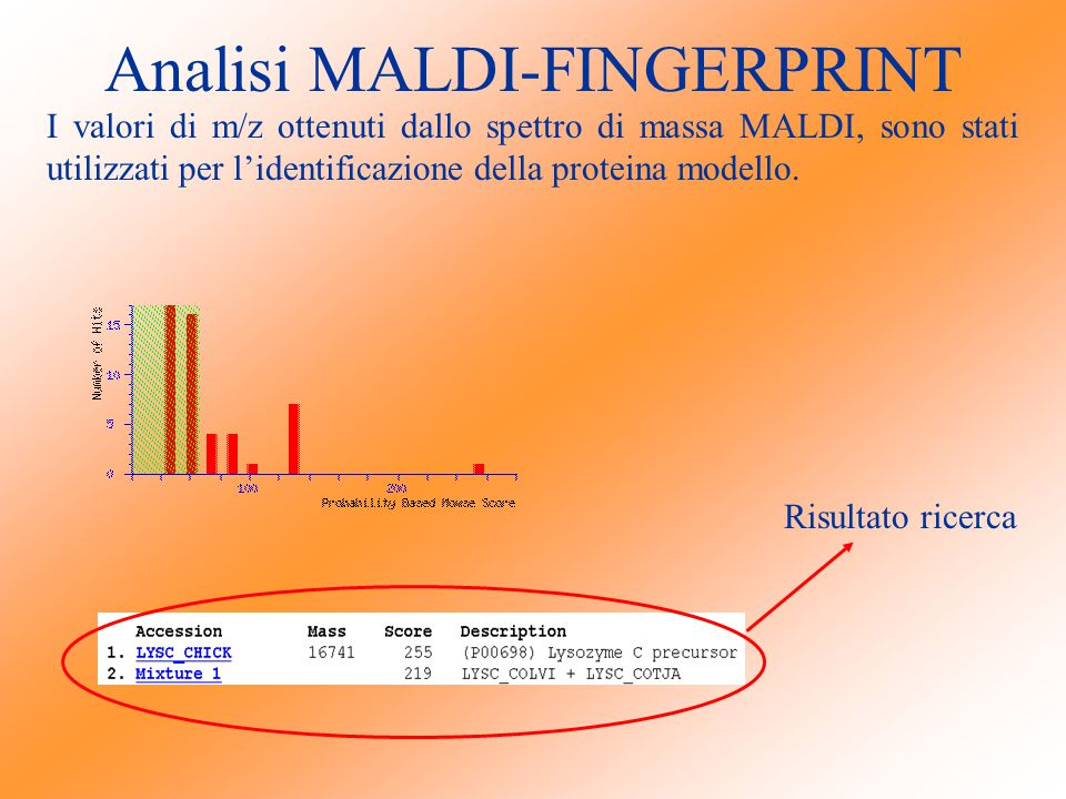 Analisi MALDI-FINGERPRINT