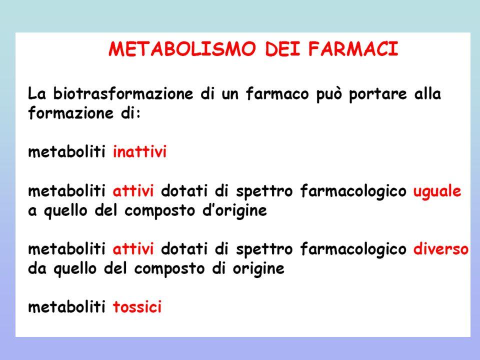 Metabolismo di un farmaco