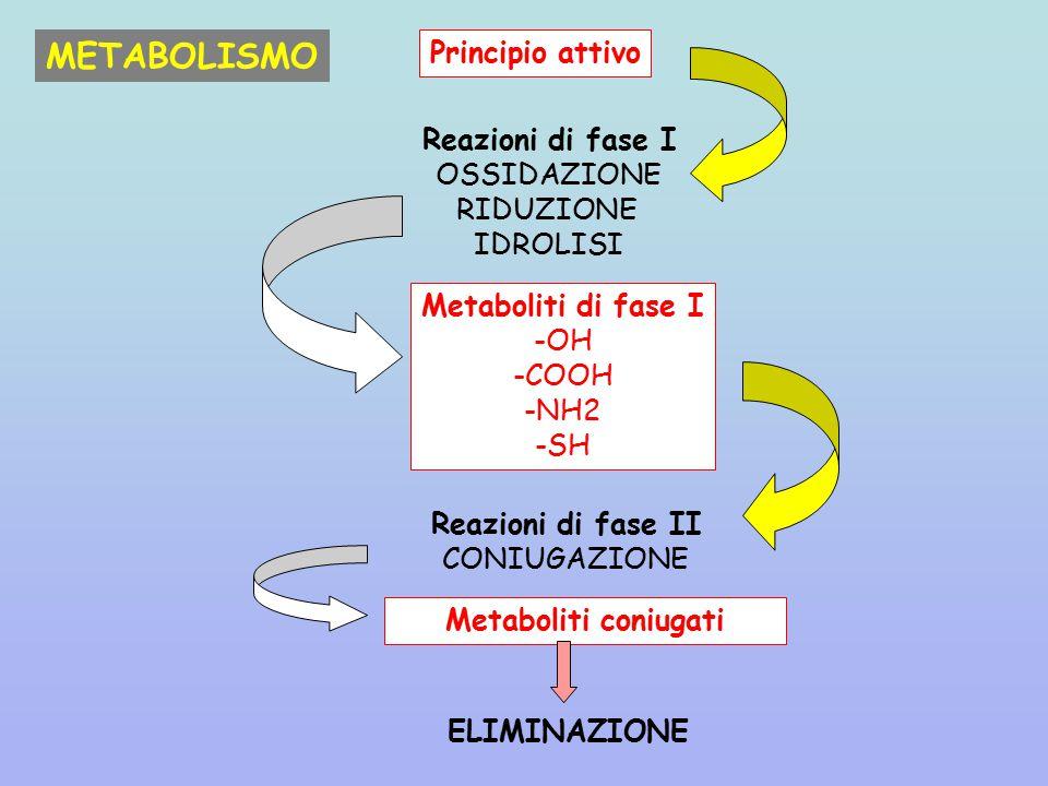 METABOLISMO Principio attivo Reazioni di fase I OSSIDAZIONE RIDUZIONE