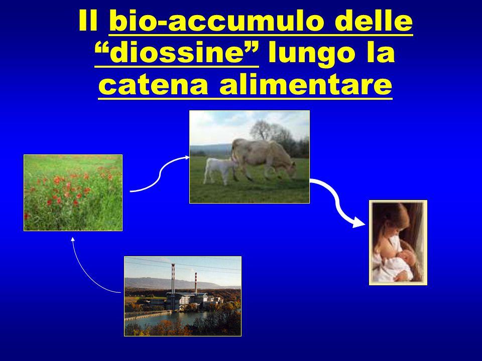 Il bio-accumulo delle diossine lungo la catena alimentare