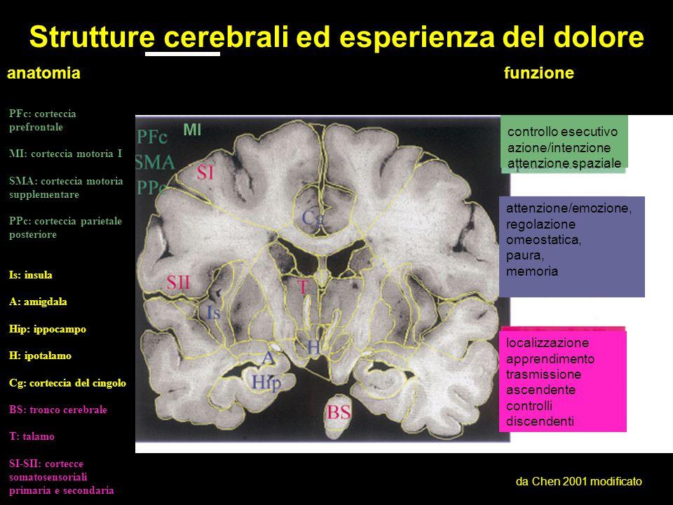 Strutture cerebrali ed esperienza del dolore