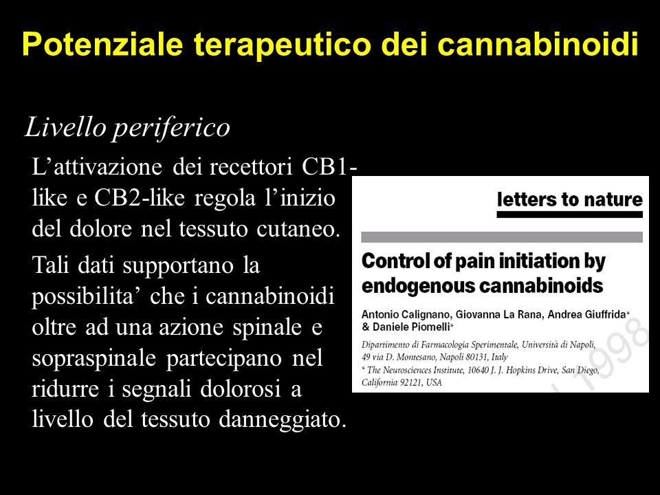 Potenziale terapeutico dei cannabinoidi